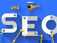网站关键词优化与快速排名的实用技巧