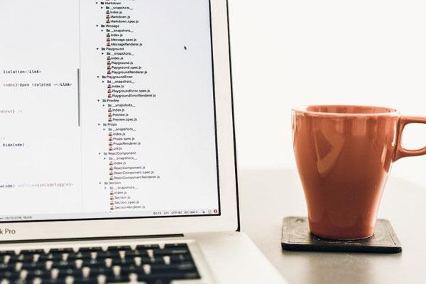 加盟网站做seo优化可以获取更多营销机会